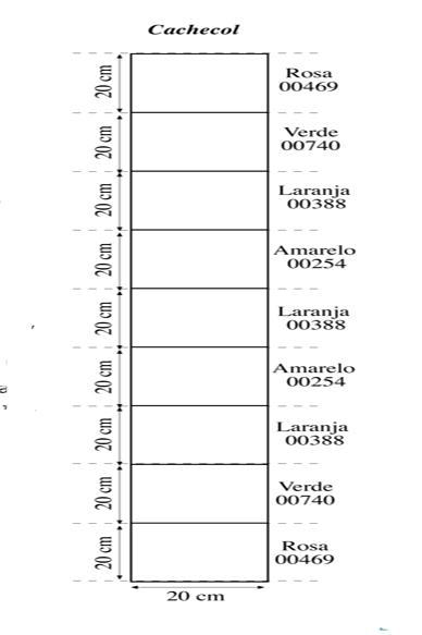 CachecolMulticolorido modelo
