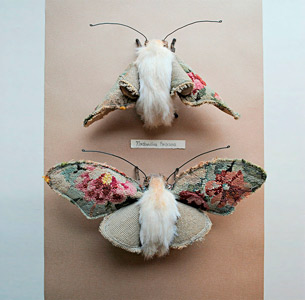 Fauna e Flora Vintage