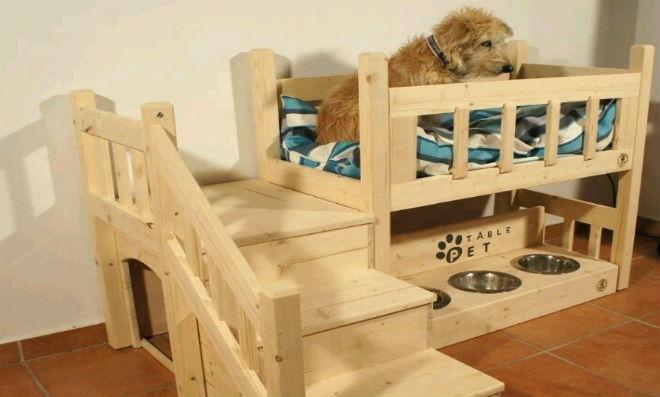 como fazer uma casinha de cachorro mais educativo