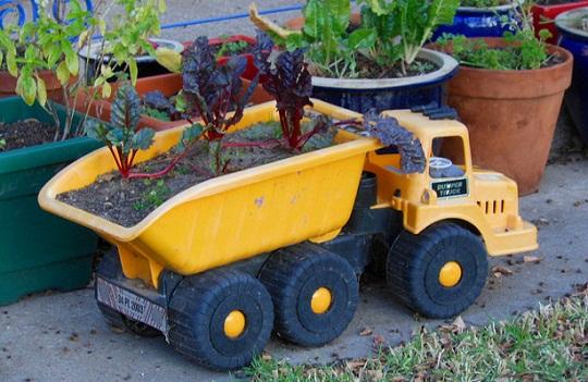 Jardim-com-brinquedos