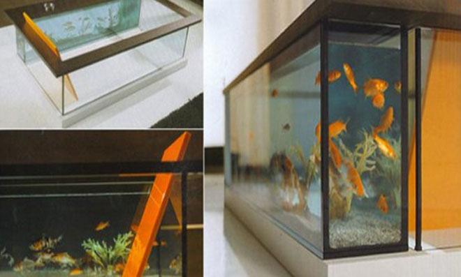 aquario 2