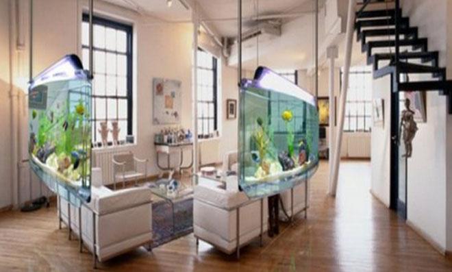 aquario 4
