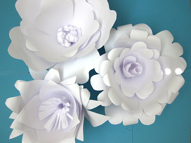 rosas-de-papel-brancas-1